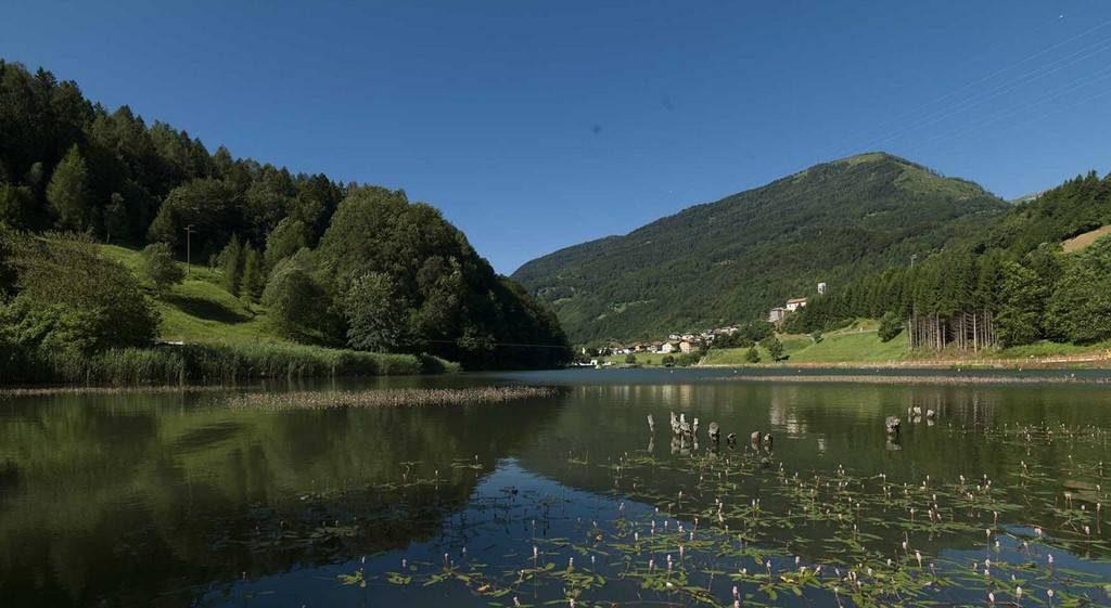 Valle del Chiese e Natura - Valle Giudicarie